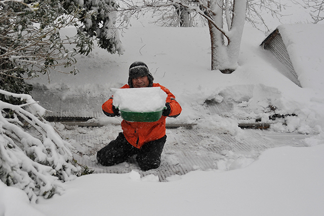 伊豆 2014 大雪